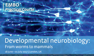"EMBO practical course on ""Developmental neurobiology: From worms to mammals"